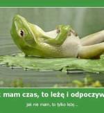 Leniwa żaba