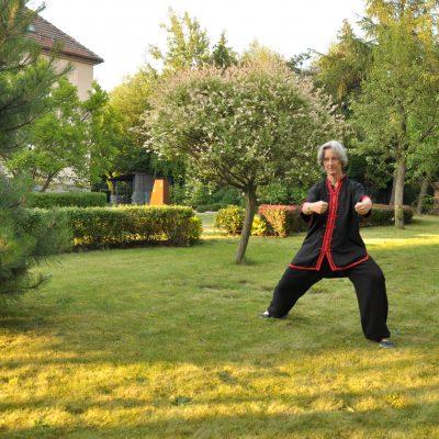 Zaj ecia tai chi w Cieszynie to z jednej strony chińska gimnastyka zdrowotna i jednocześnie nauka samoobrony. Tai chi poprawi kondycję fizyczną, wzmocni ścięgna i kości, poprawi ruchomość stawów