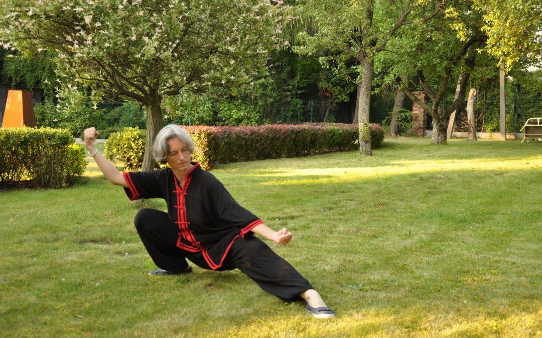 Kung fu w plenerze w Ustroniu