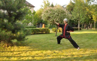 Tai chi dla chorzowskich seniorów