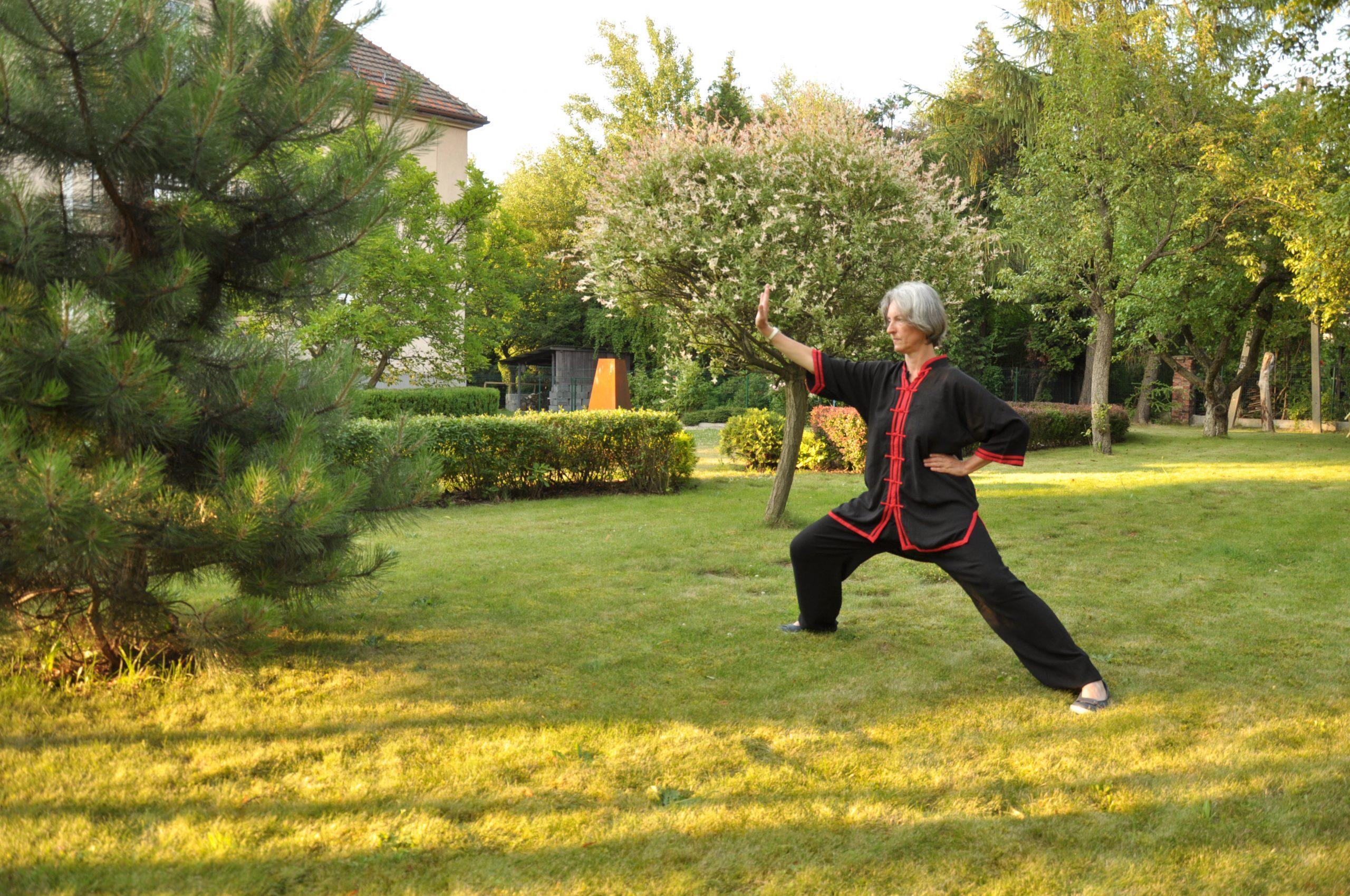 Qigong w Chorzowie to zajęcia dla początkujących o charakterze rehabilitacyjnym. Cwiczenia qigong pomagają w utrzymaniu ciała w dobrym stanie zdrowotnym zapewniając prawidłowe krążenie energii w ciele.
